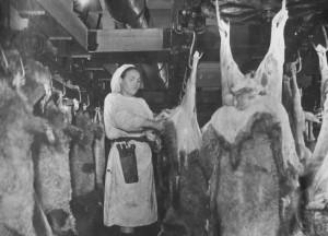 мясокомбинат иркутский архив