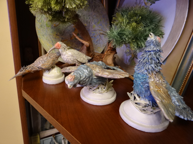 птицы ополеева