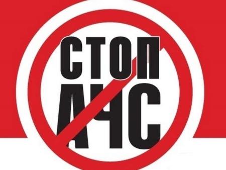 В связи со вспышкой африканской чумы свиней в Красноярском крае в Иркутской области вводятся усиленные меры безопасности