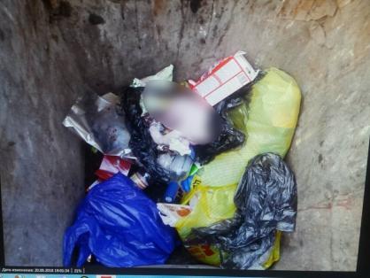 Пакет с телом младенца обнаружен в мусорном контейнере города Усолье-Сибирское