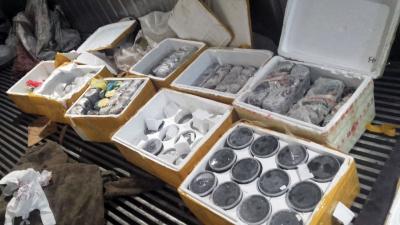 В Иркутской области сотрудники ГИБДД изъяли более 100 кг черной икры