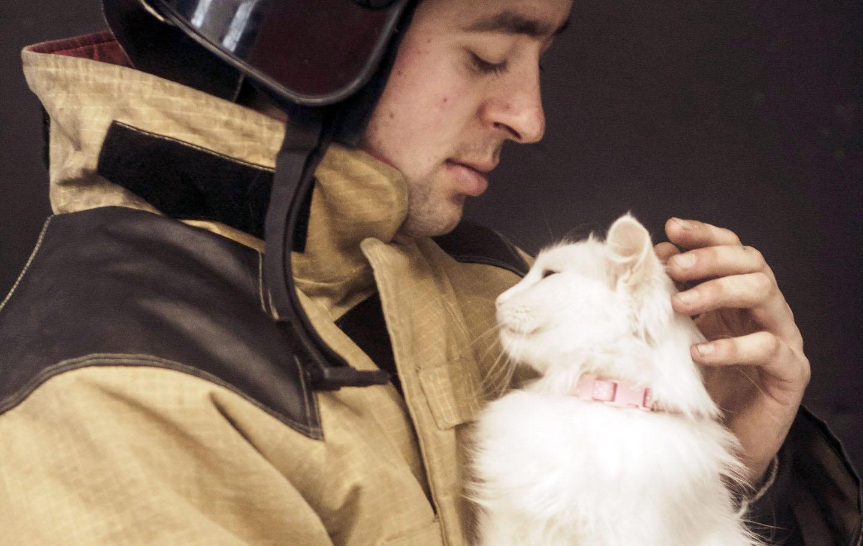 Иркутские спасатели приняли участие в фотосессии с котами