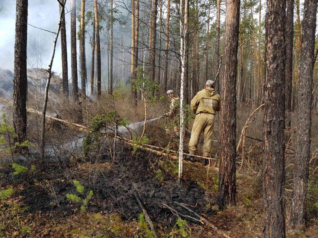 На 1 июня в Иркутской области действует 7 лесных пожаров