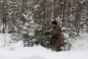 В Иркутской области началась межведомственная операция «Ель»