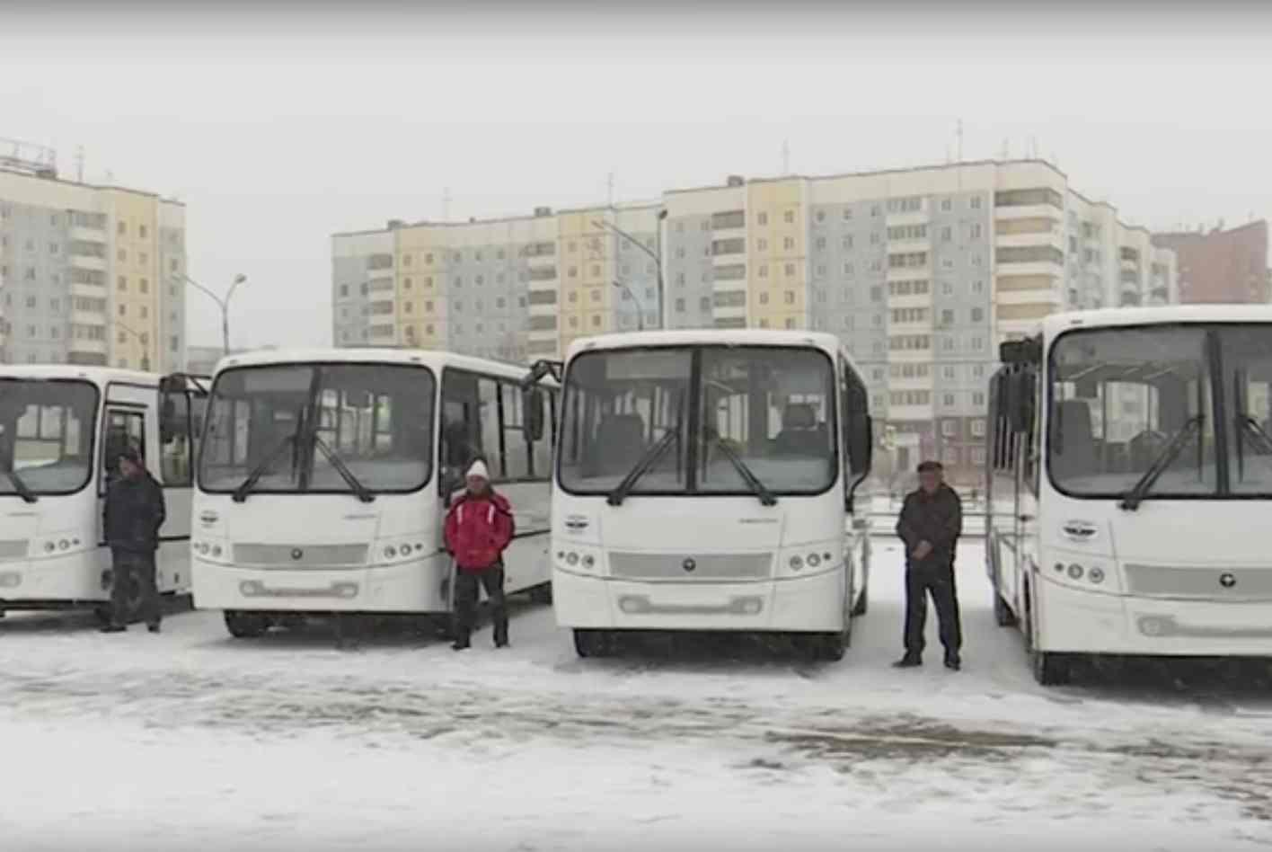 Новые автобусы пополнили парк Братска