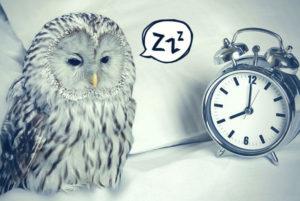 Тест: Вы жаворонок или сова?