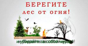 Волонтерский отряд будет тушить леса вдоль трассы Иркутск-Ангарск: Присоединяйтесь!