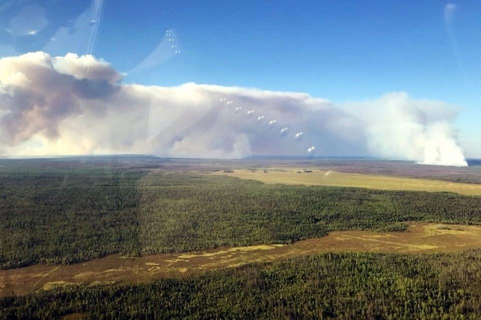 В Приангарье горит больше 93.000 гектаров тайги