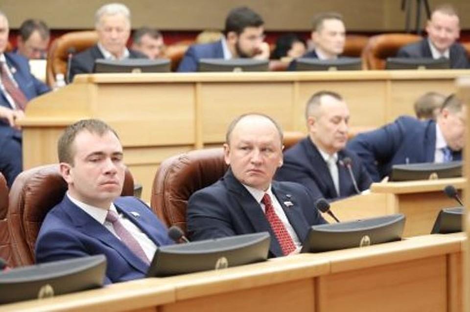 Расходы на отлов и содержание одного бездомного животного в Приангарье увеличат до 3600 рублей